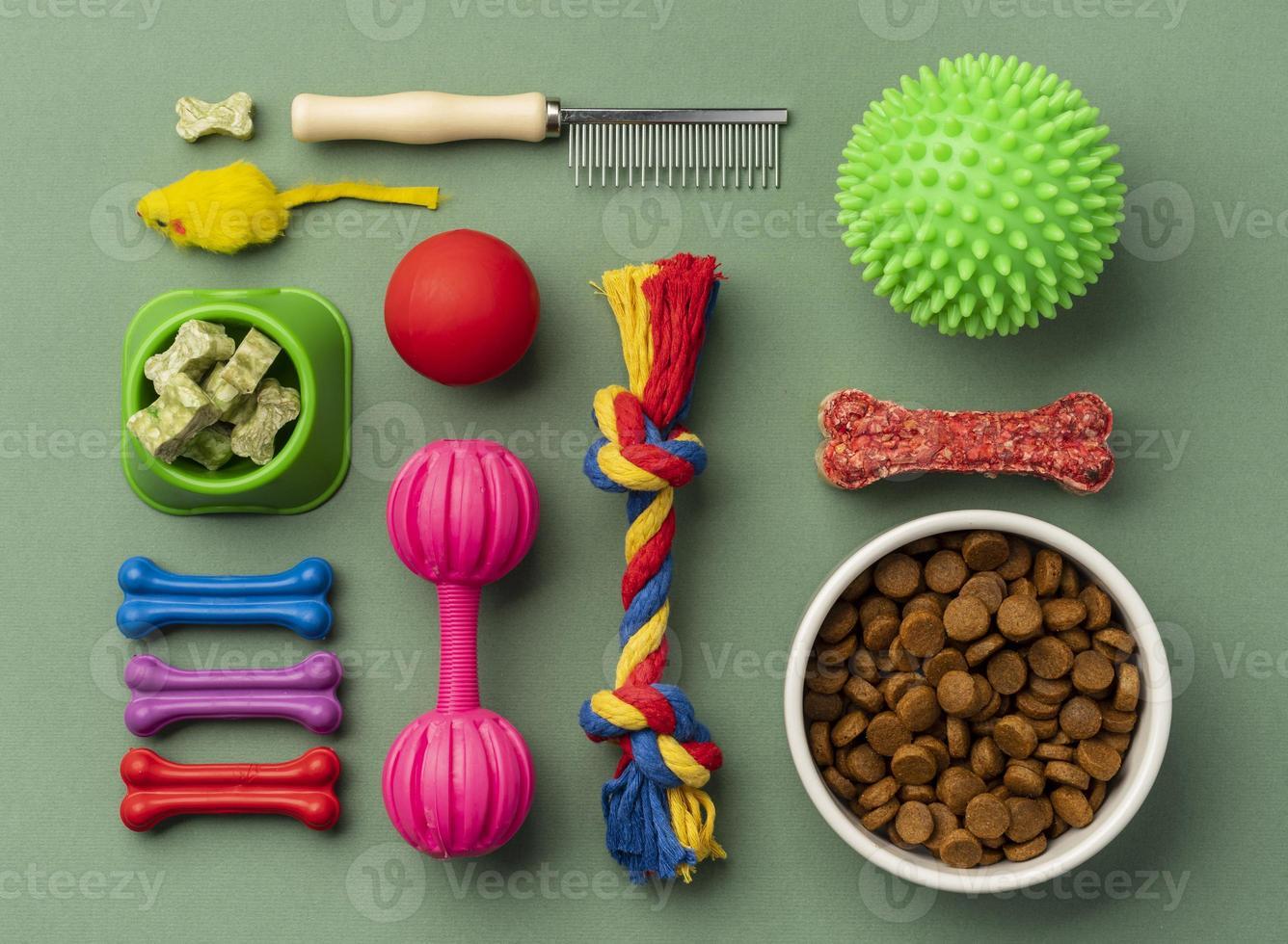 Pet accessories still life concept set photo