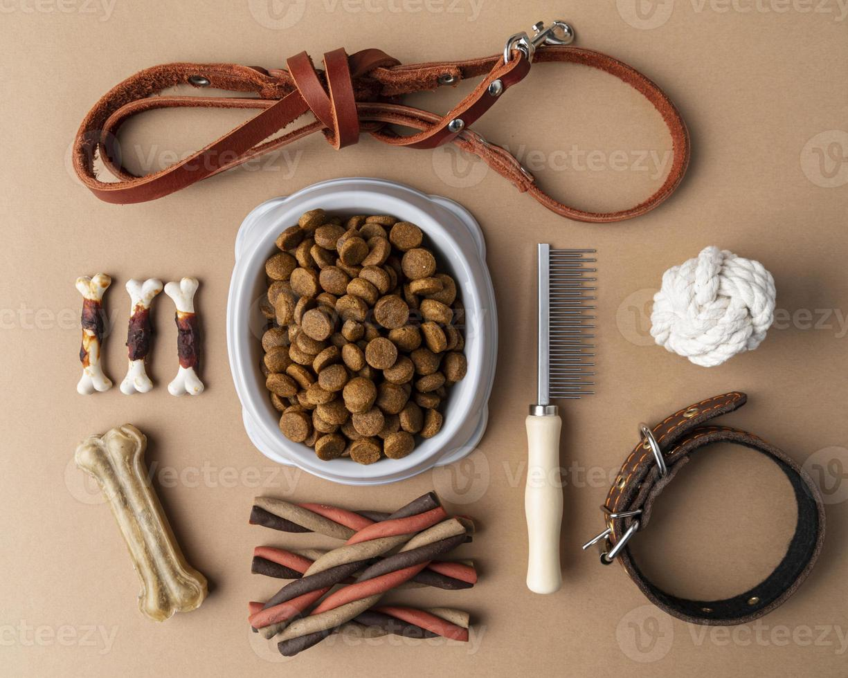 Pet accessories still life with food bowl and treats photo