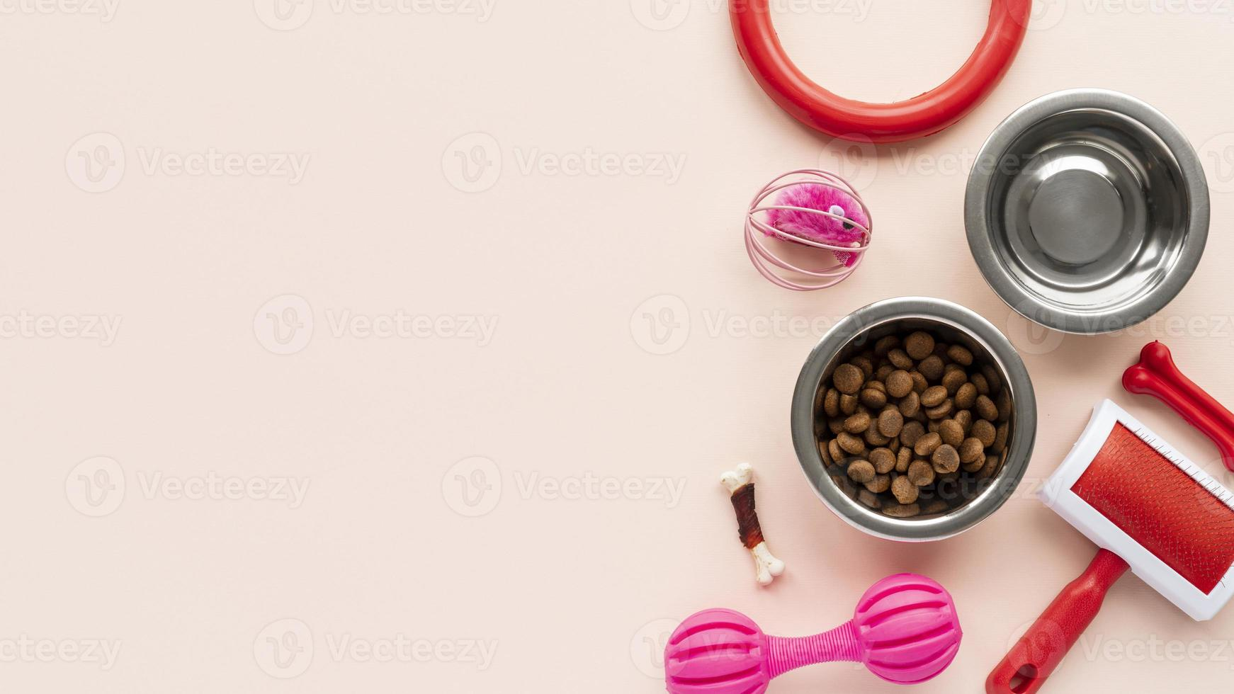 Top view on bowls set with pet accessories still life concept photo