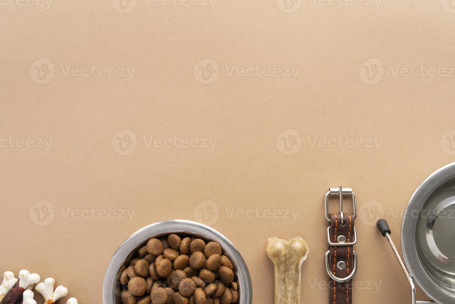 Top view on full dog food bowl and accessories photo