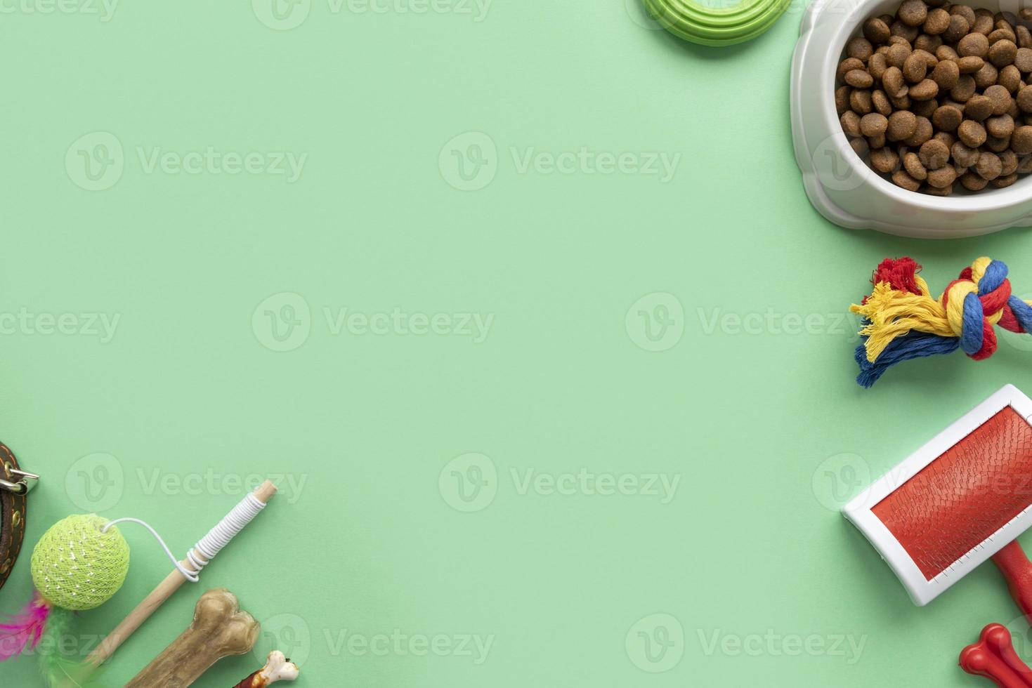 Top view on pet accessories and food photo