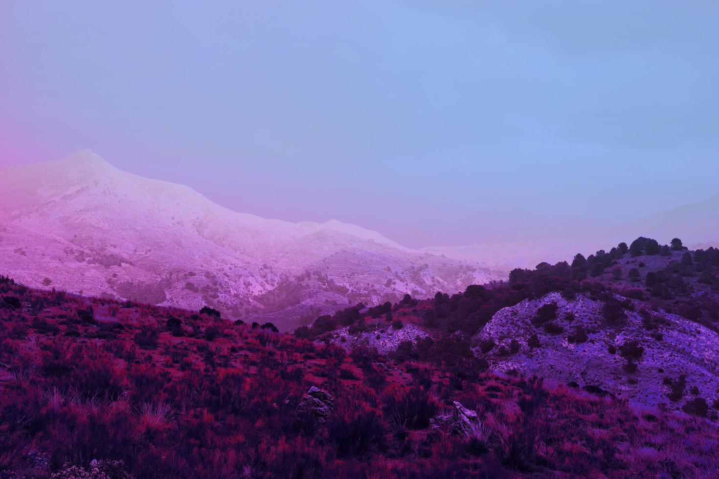 Aesthetic retro vaporwave landscape photo