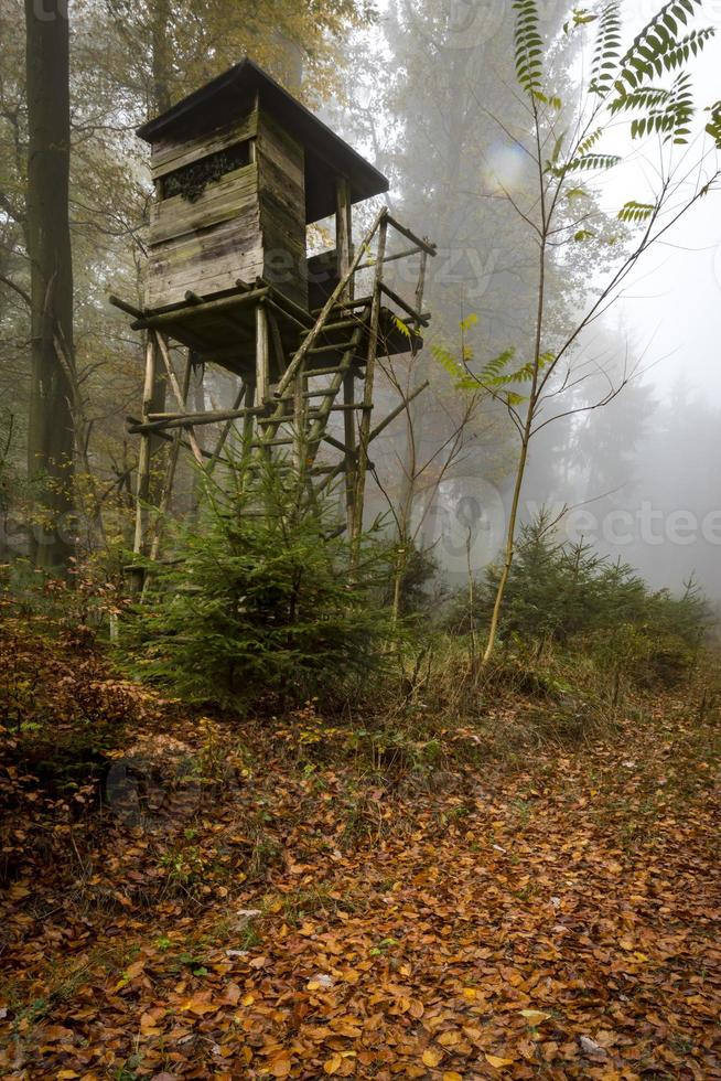 Wooden hunter perched at the forest edge in fog in autumnal pine forest photo