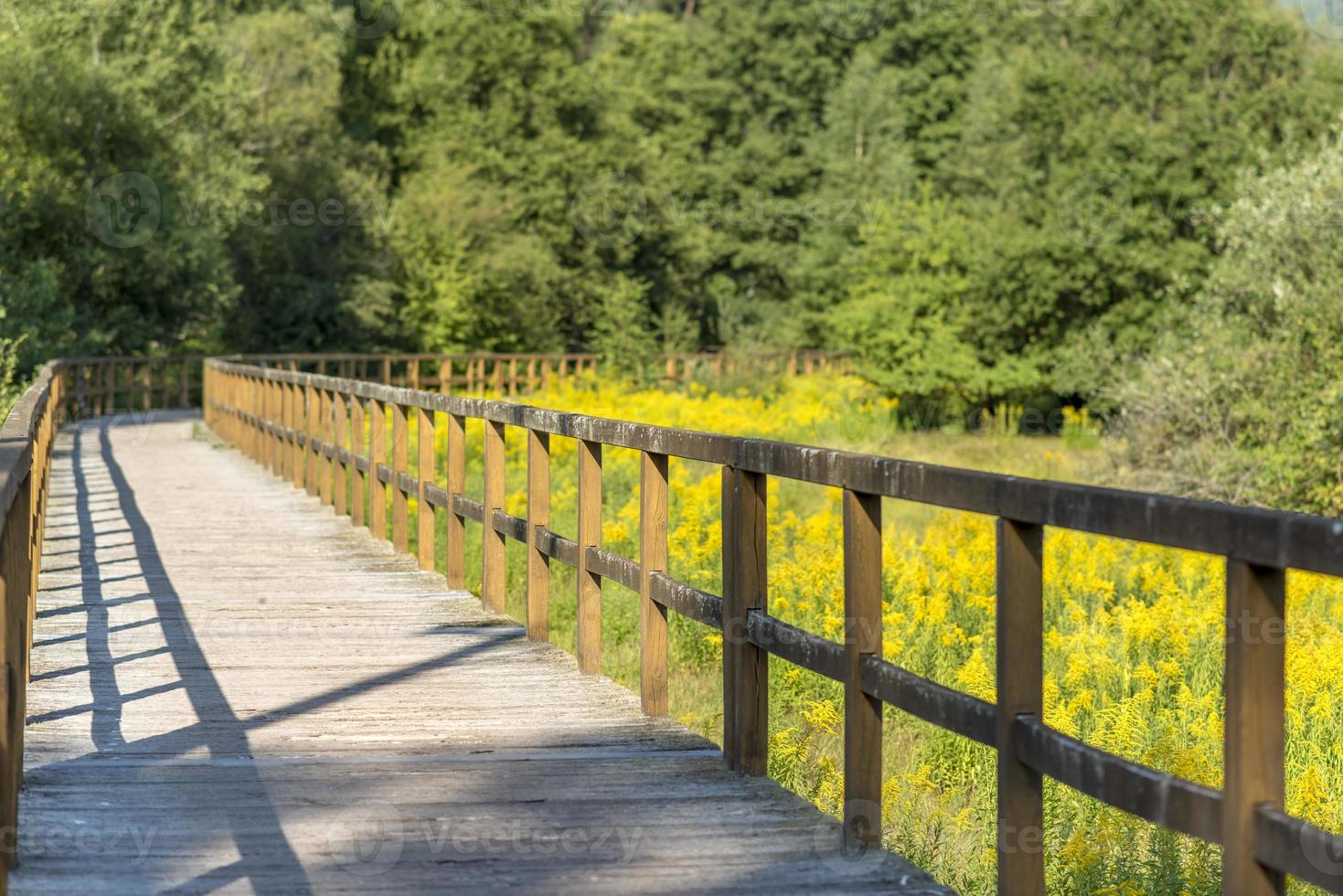 Wooden bridge over a field with meadow and wooded hills photo