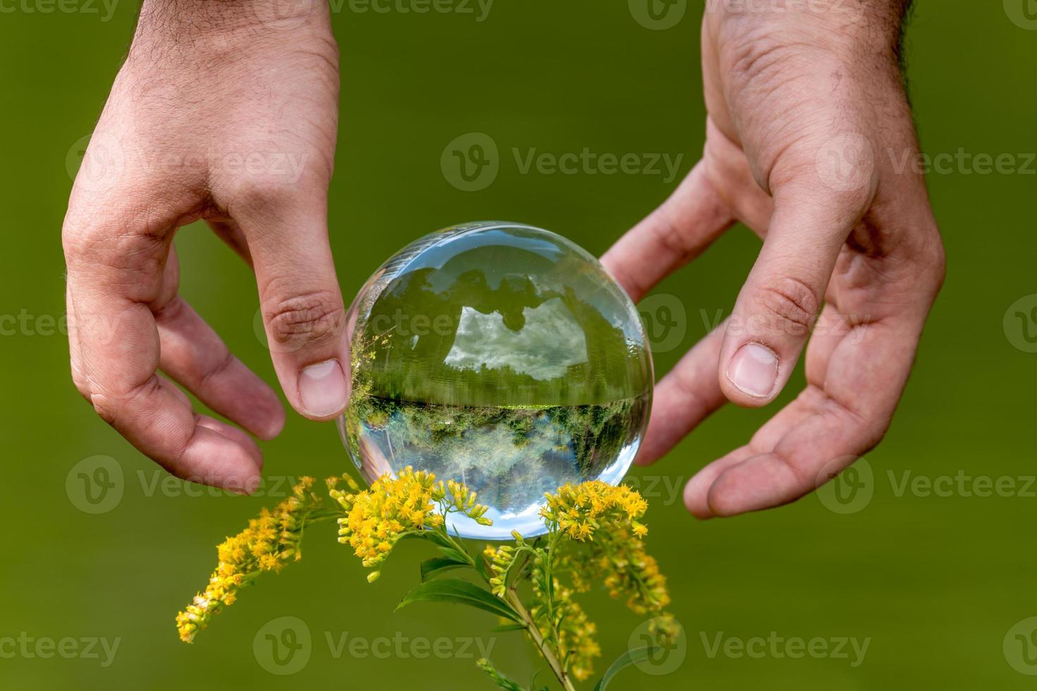 A mans hand reaches for a glass globe with a mirrored lake trees and sky against a green background photo
