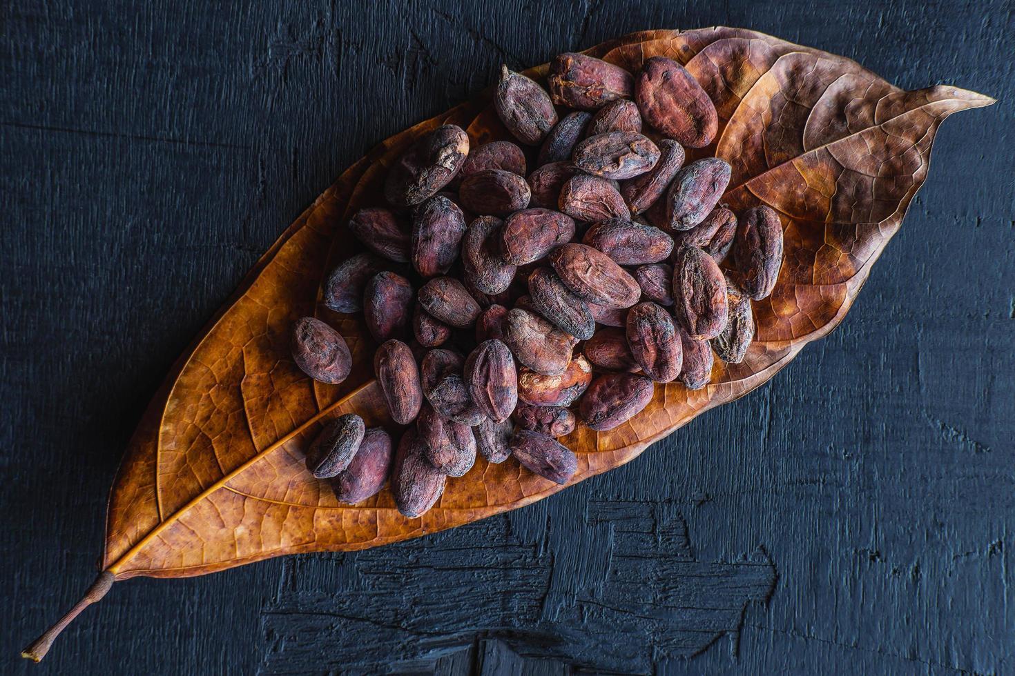 granos de cacao secos en hojas de cacao foto