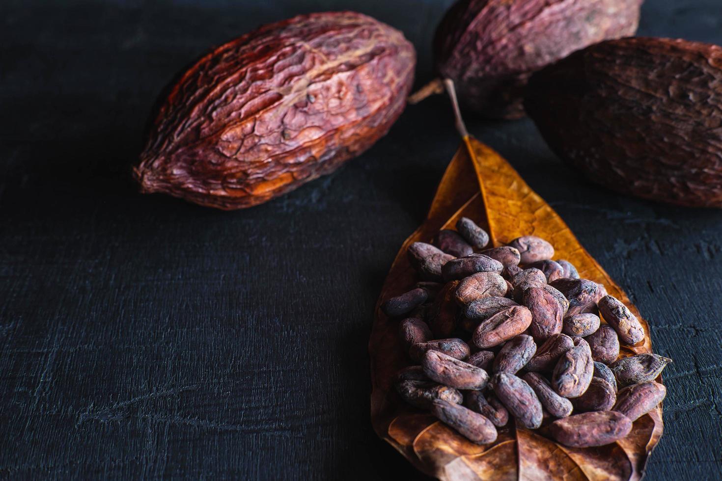 granos de cacao secos y cacao seco foto