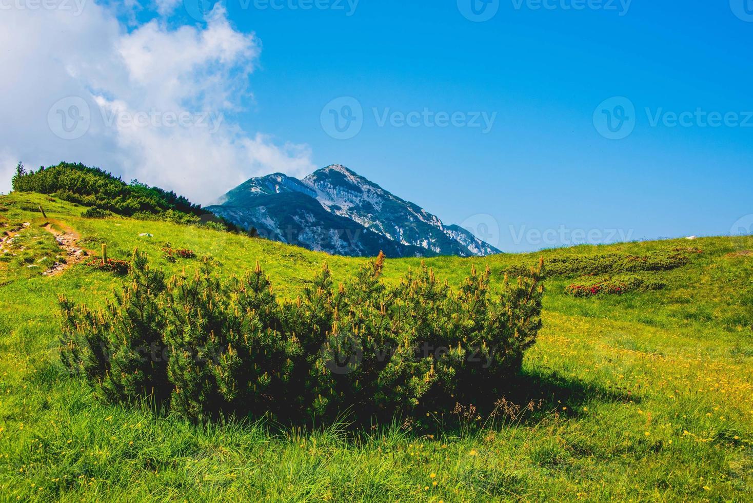 Montañas por encima de Malcesine en la provincia de Verona, Italia foto