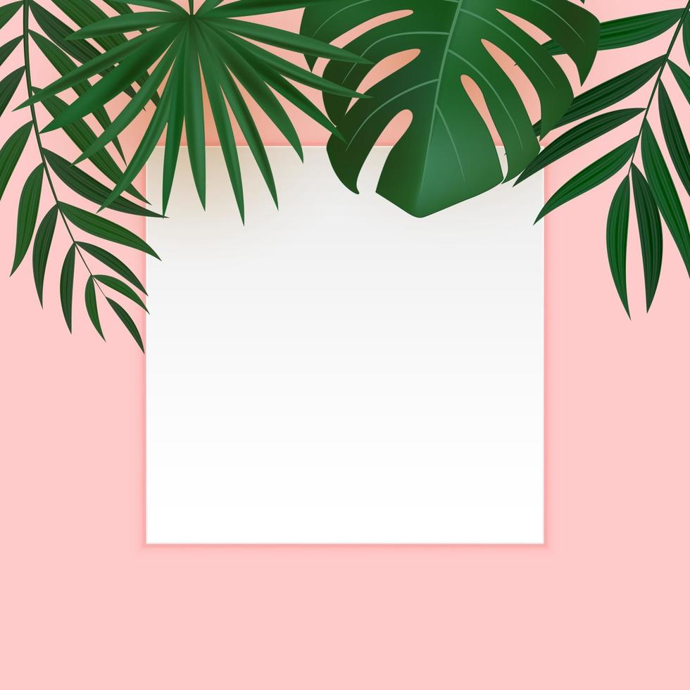 Natural Realistic Green and Gold Palm Leaf Tropical Background with Blank White Frame vector