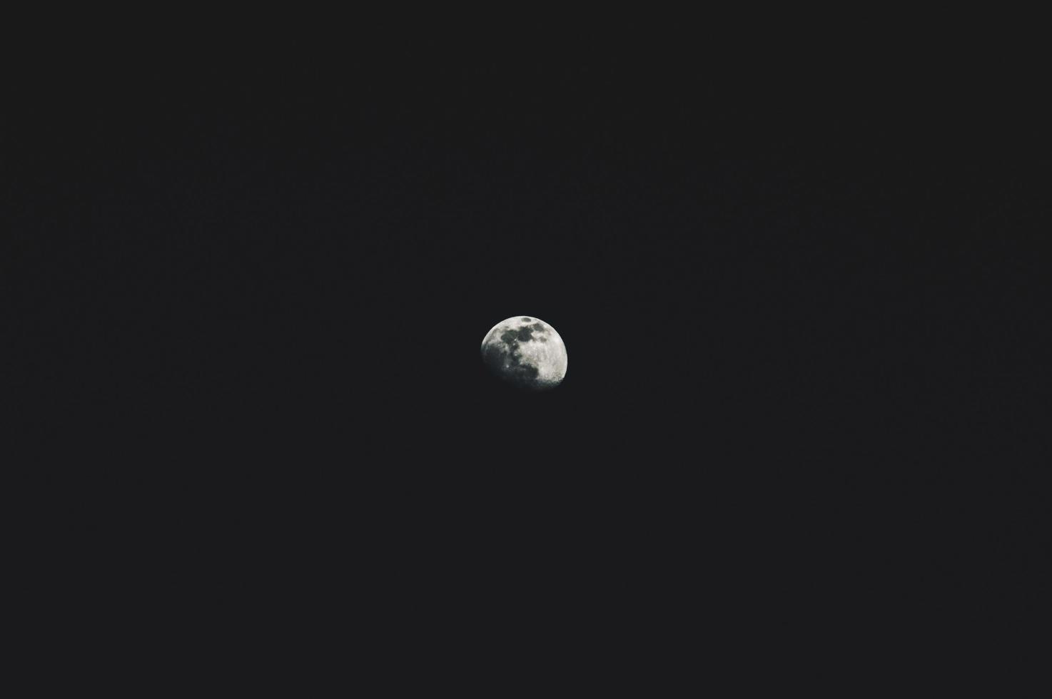 Gray moon closeup in the dark sky photo