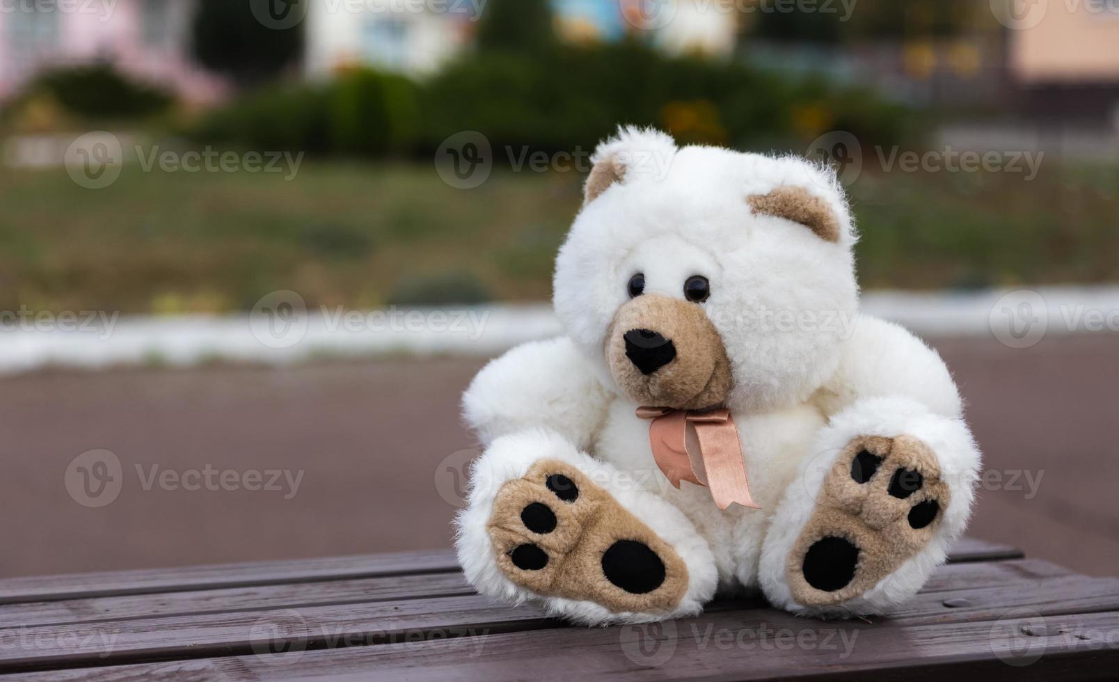 oso de peluche triste y solitario foto