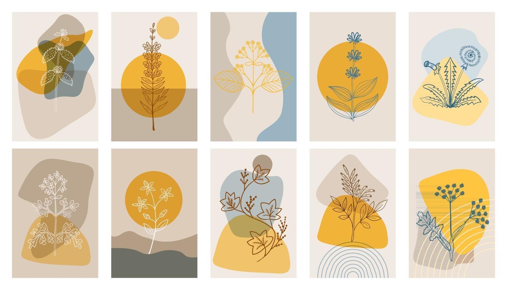 carteles abstractos con hierbas amargas, set. elementos geométricos abstractos y flores, hojas y bayas vector