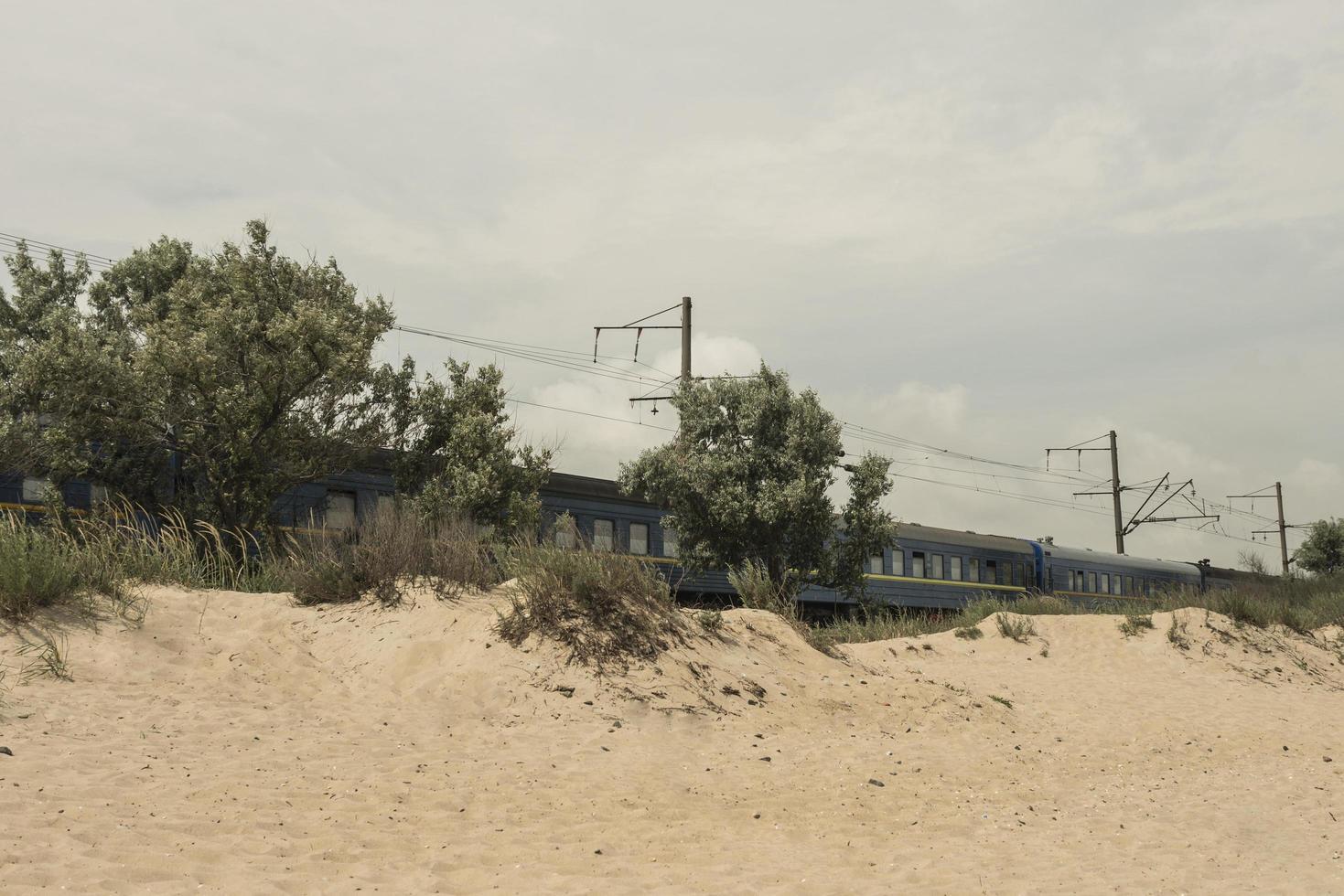 el tren pasa por el desierto aceitunas que crecen cerca del ferrocarril foto