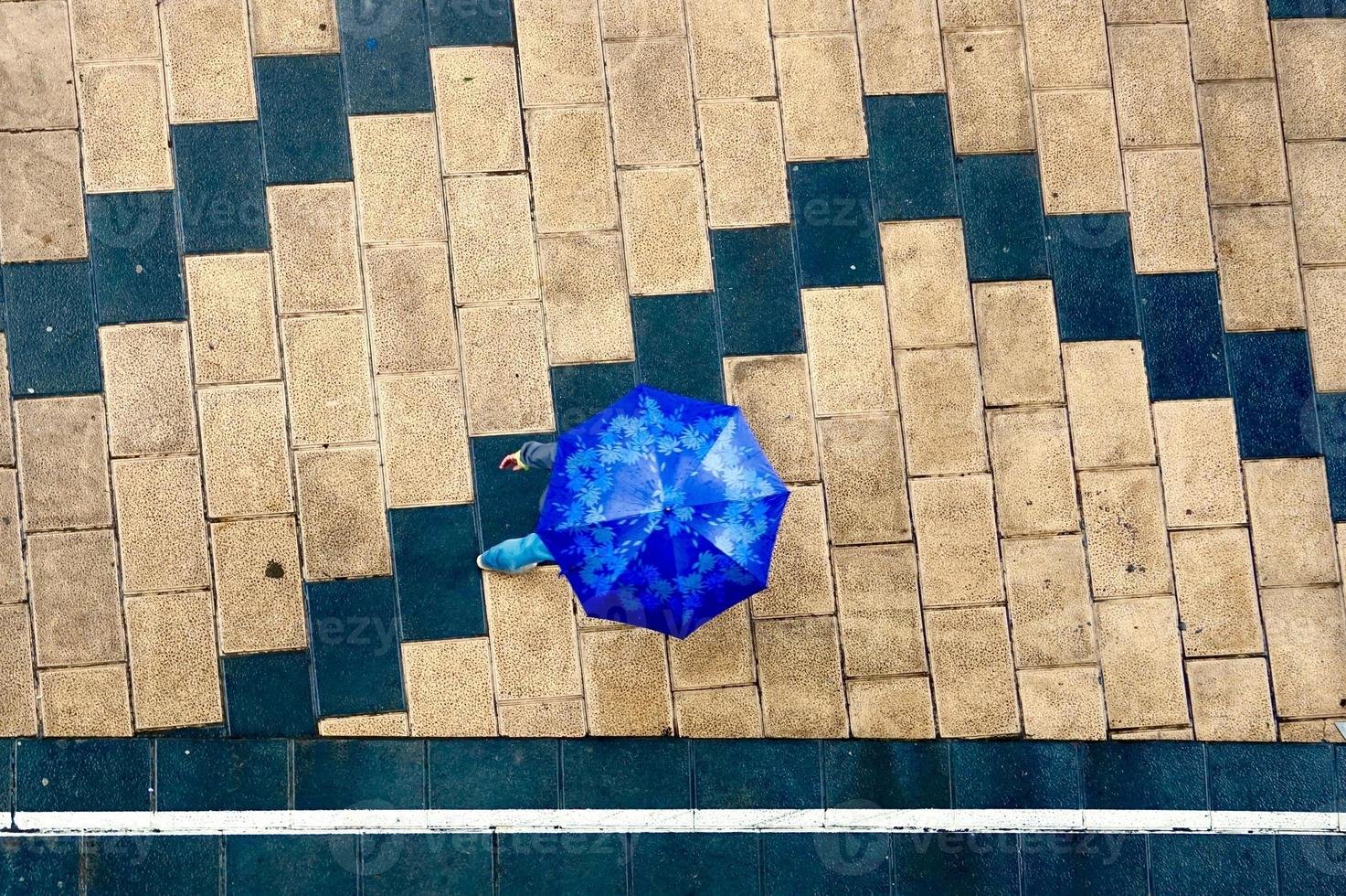 woman with an umbrella in rainy days photo