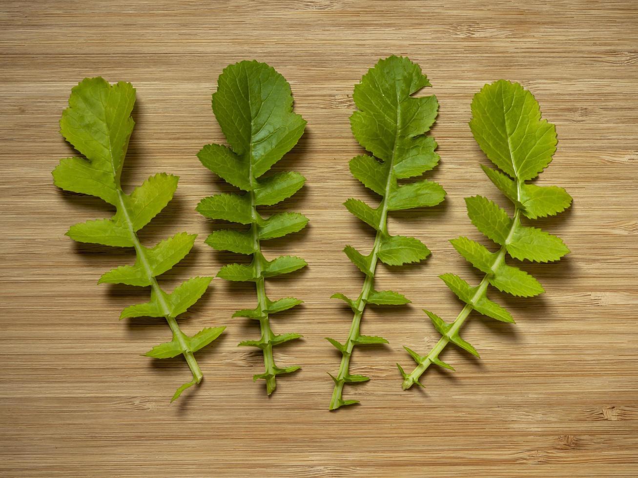 Leaves of leaf radish Saisai on a wooden board photo
