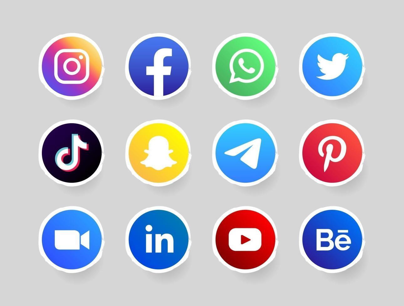 circle social media button with white border vector
