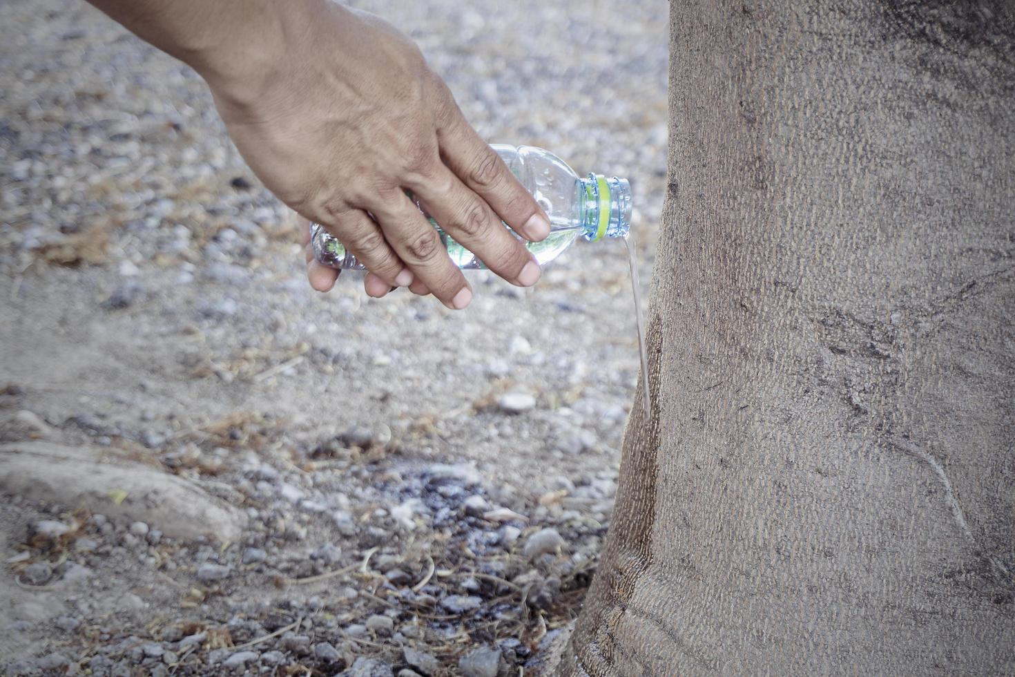 Man hand holding a water bottle watering a big tree Concept holy of Buddhism Thai people photo