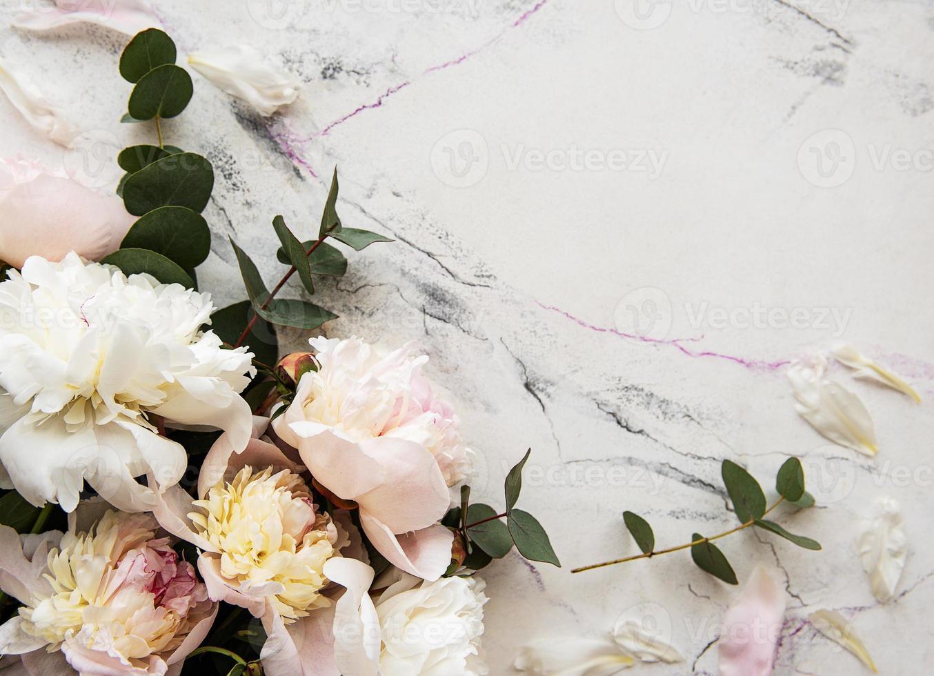 fondo con peonías rosas foto