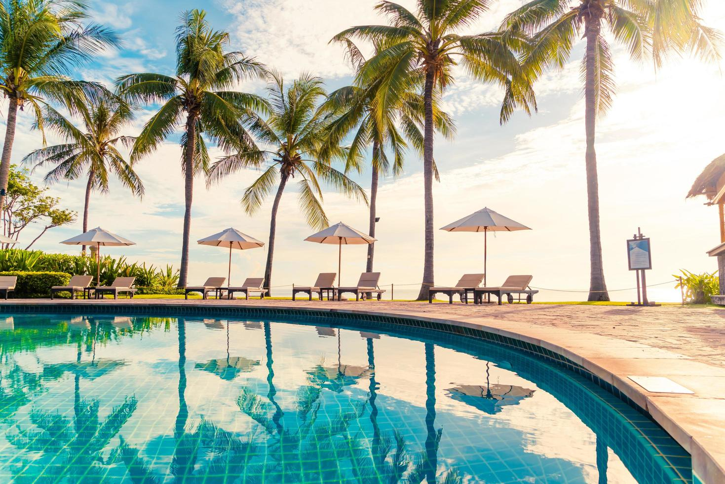 Beautiful luxury umbrella and chair around outdoor swimming pool in hotel and resort with coconut palm tree on sunset  or sunrise sky photo