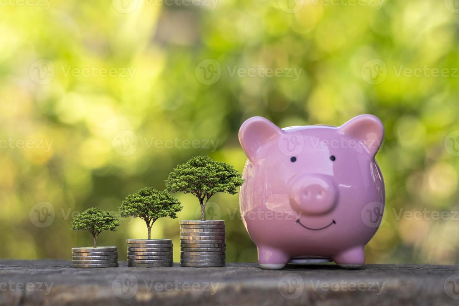 la adición de monedas y plantas crece en monedas apiladas, ideas de ganancias de inversión y dividendos de ahorro. foto