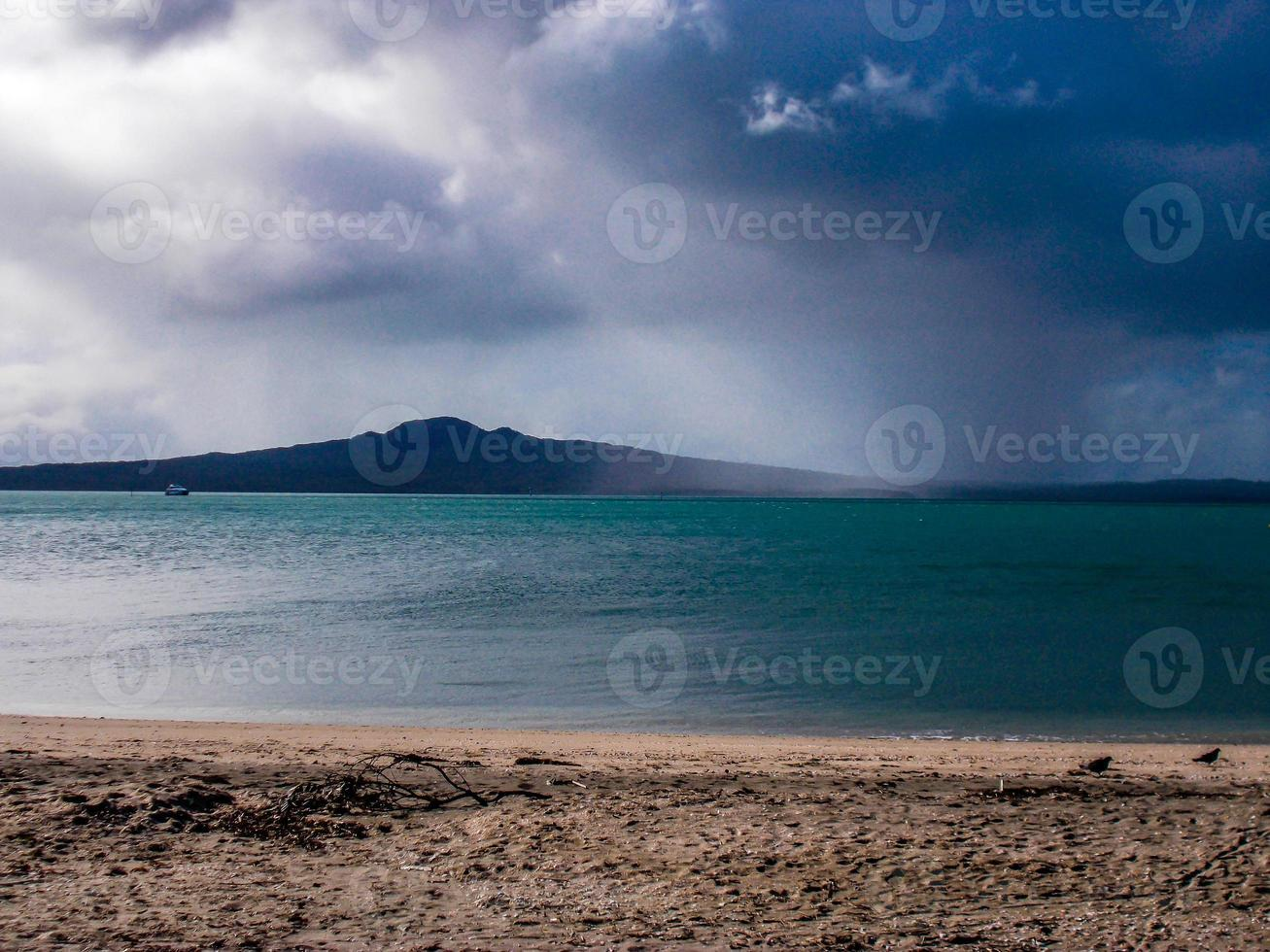 Shoreline of Mission Bay, Auckland, New Zealand photo