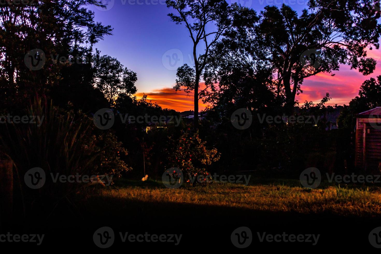 Sun setting over the back yard. Ranui, Auckland, New Zealand photo