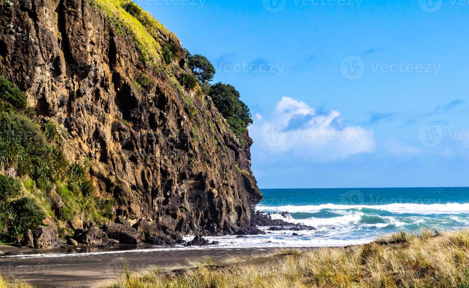 Sandy beaches of Piha Beach, Auckland, New Zealand photo