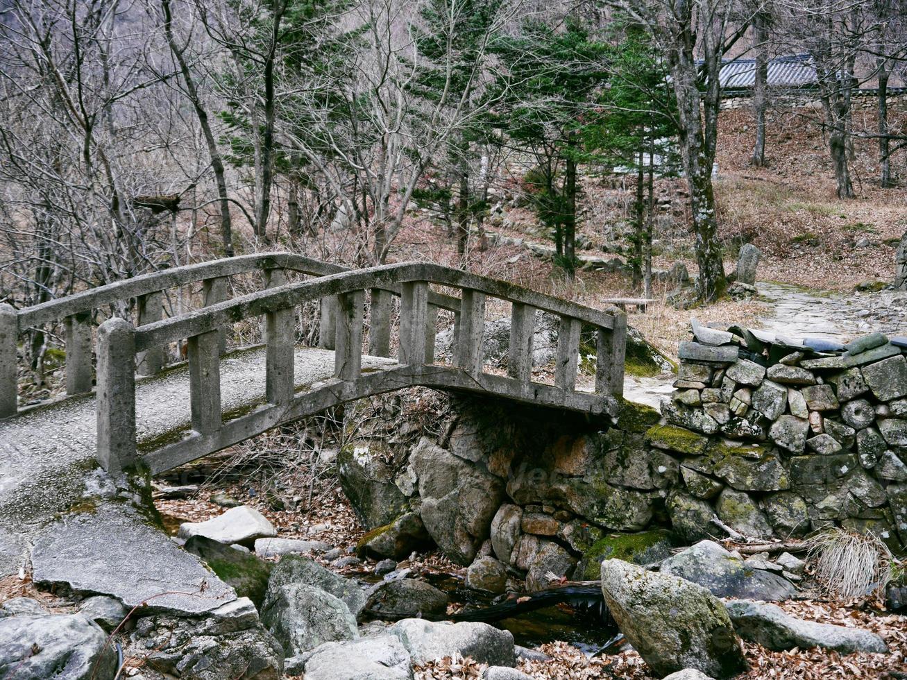 Old bridge under a creek in the forest of Seoraksan National Park. South Korea photo