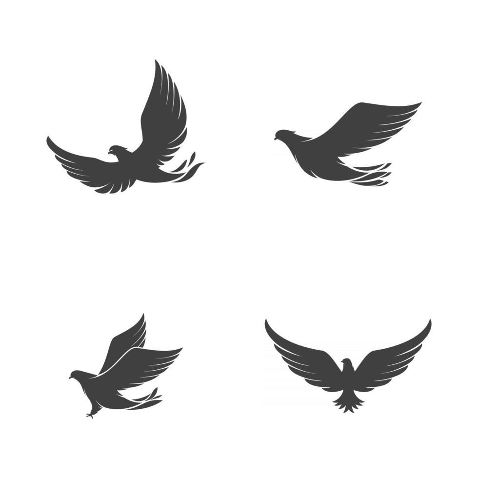Falcon wing icon Template vector
