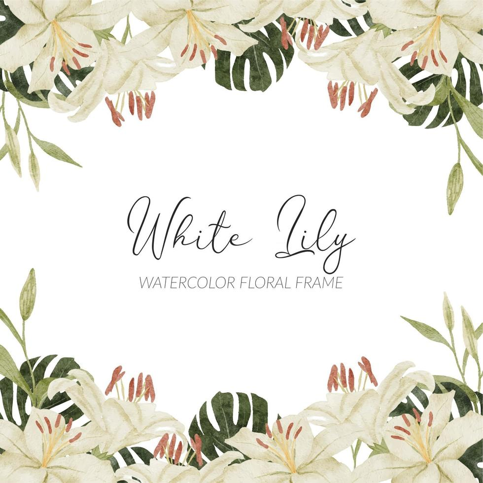 watercolor white lily tropical flower arrangement with monstera vector
