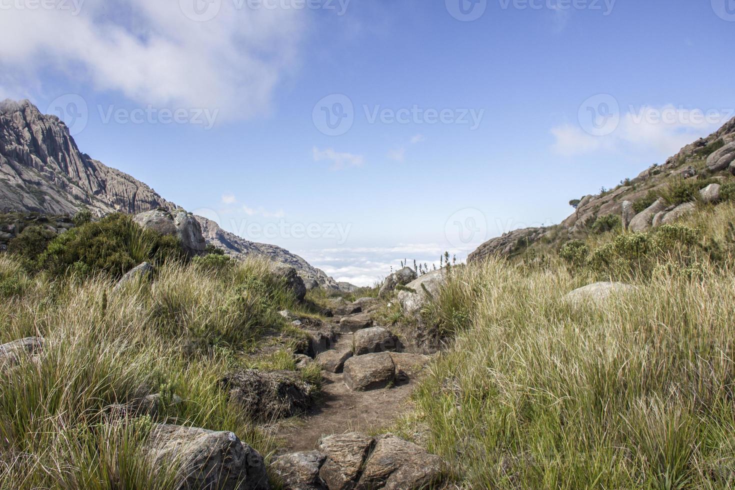 through the trails of Itatiaia photo