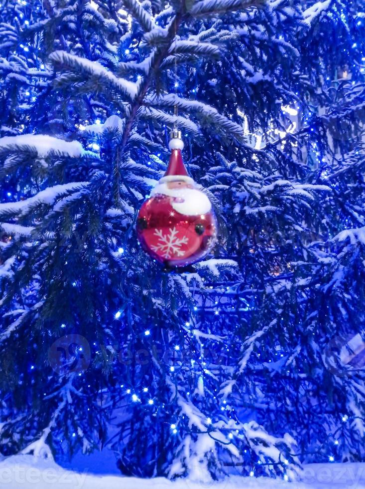 Snowy blue spruce with a garland of lights and a red ball in the form of Santa Claus photo