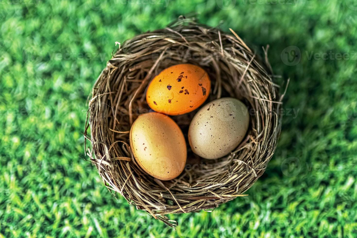 Easter eggs in a natural nest on a green background with grass texture. View from above photo