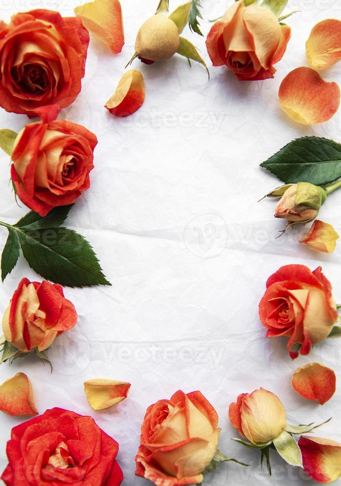 Flowers composition. Frame made of red  roses and leaves on white paper background photo