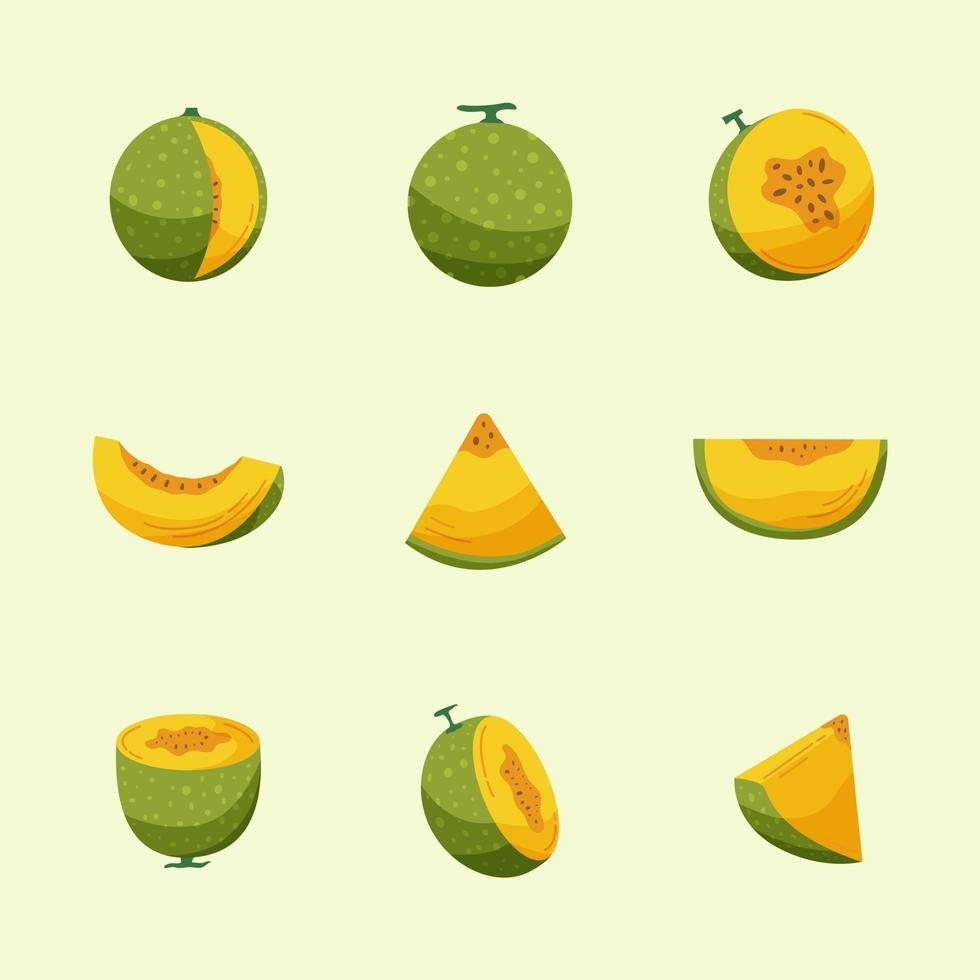 Icon Pack Melon Fruits vector
