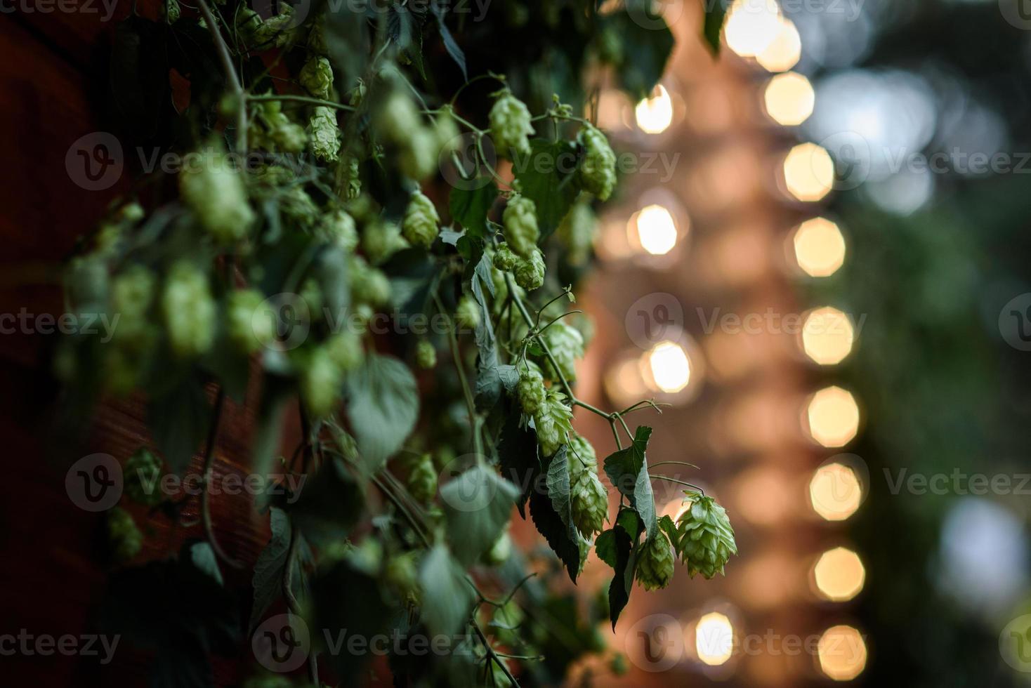 wedding flower decor photo