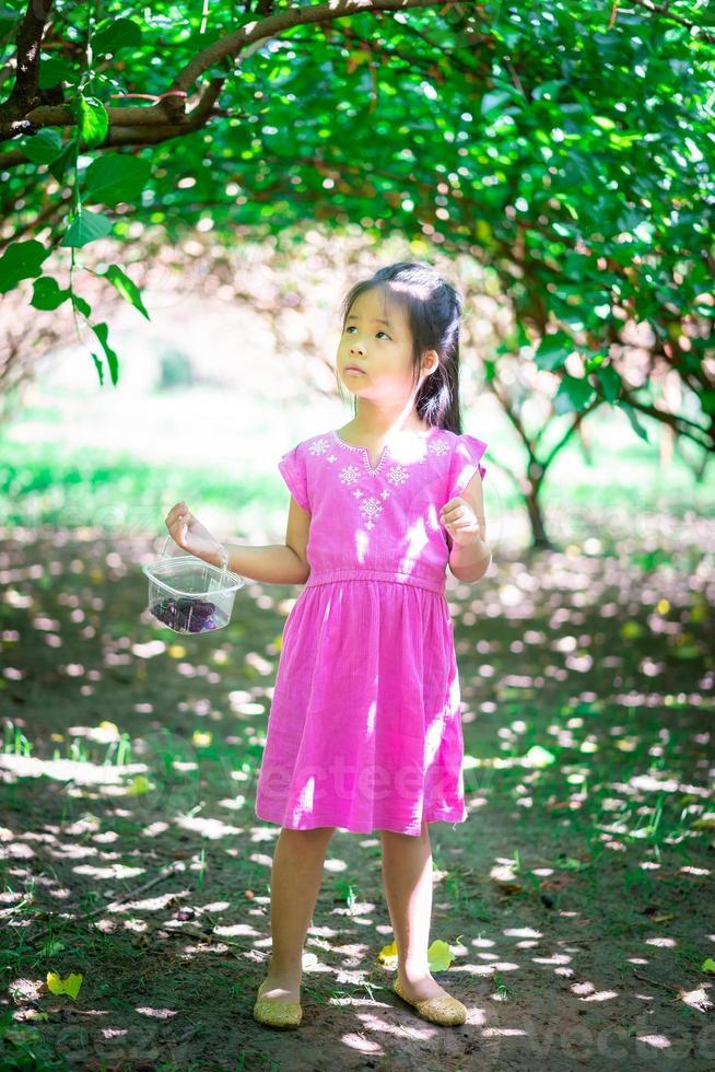 niña asiática mirando la fruta de la morera en el jardín foto