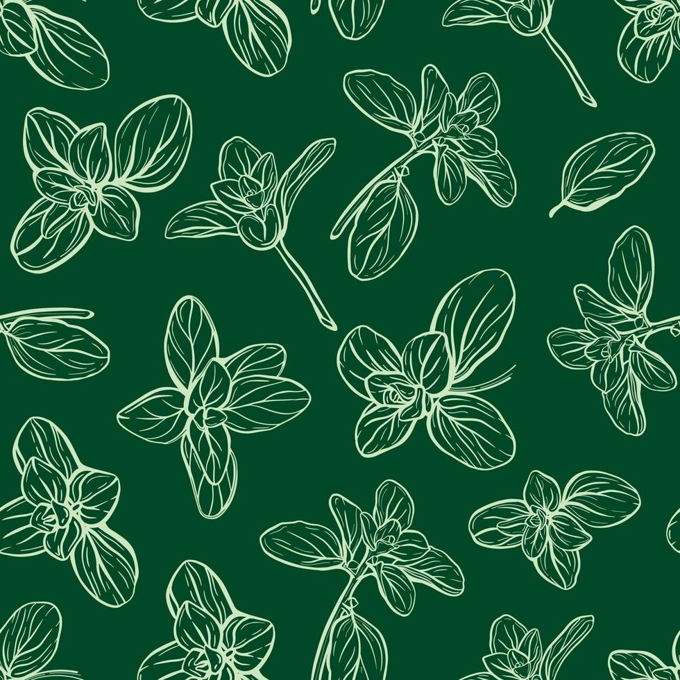 basil leaves and herbs seamless pattern vector