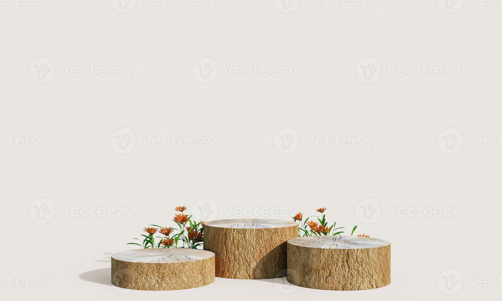 Wooden product display podium with nature leaves on pastel background. 3D rendering photo