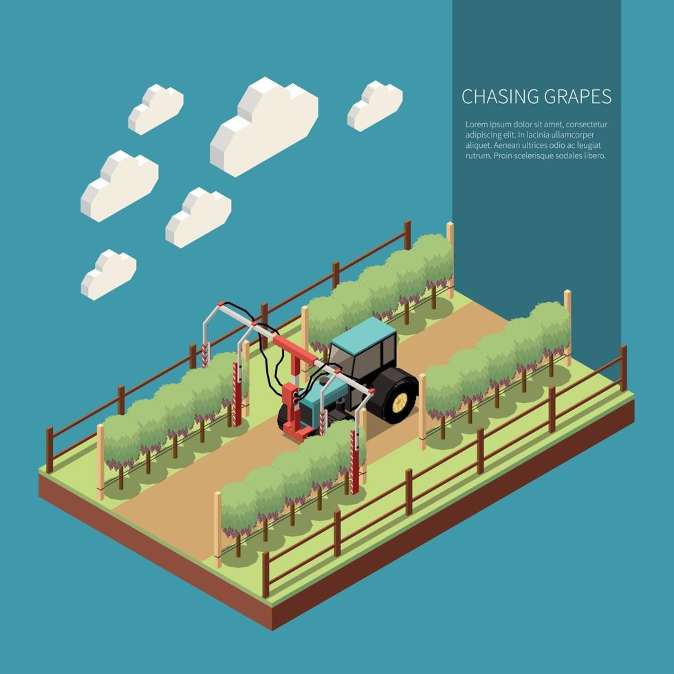 Chasing Grapes Isometric Composition Vector Illustration