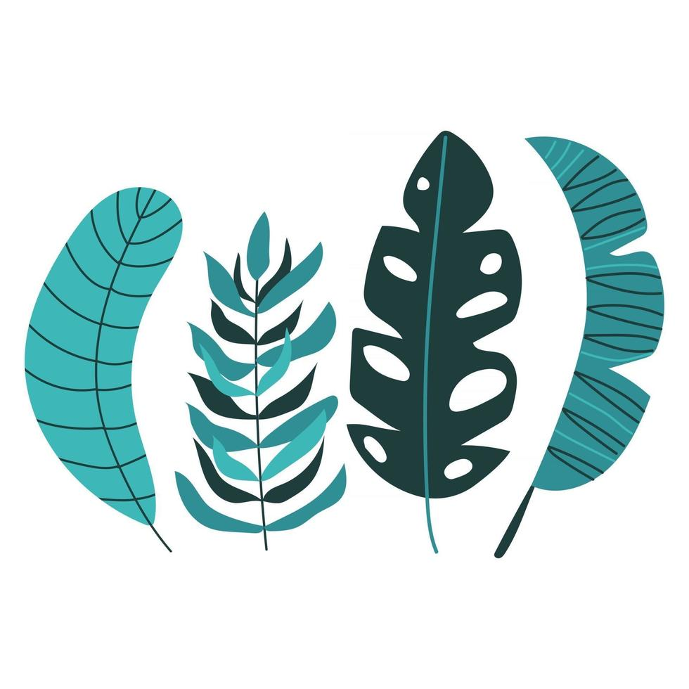 Hand drawn modern set of tropical leaves. vector