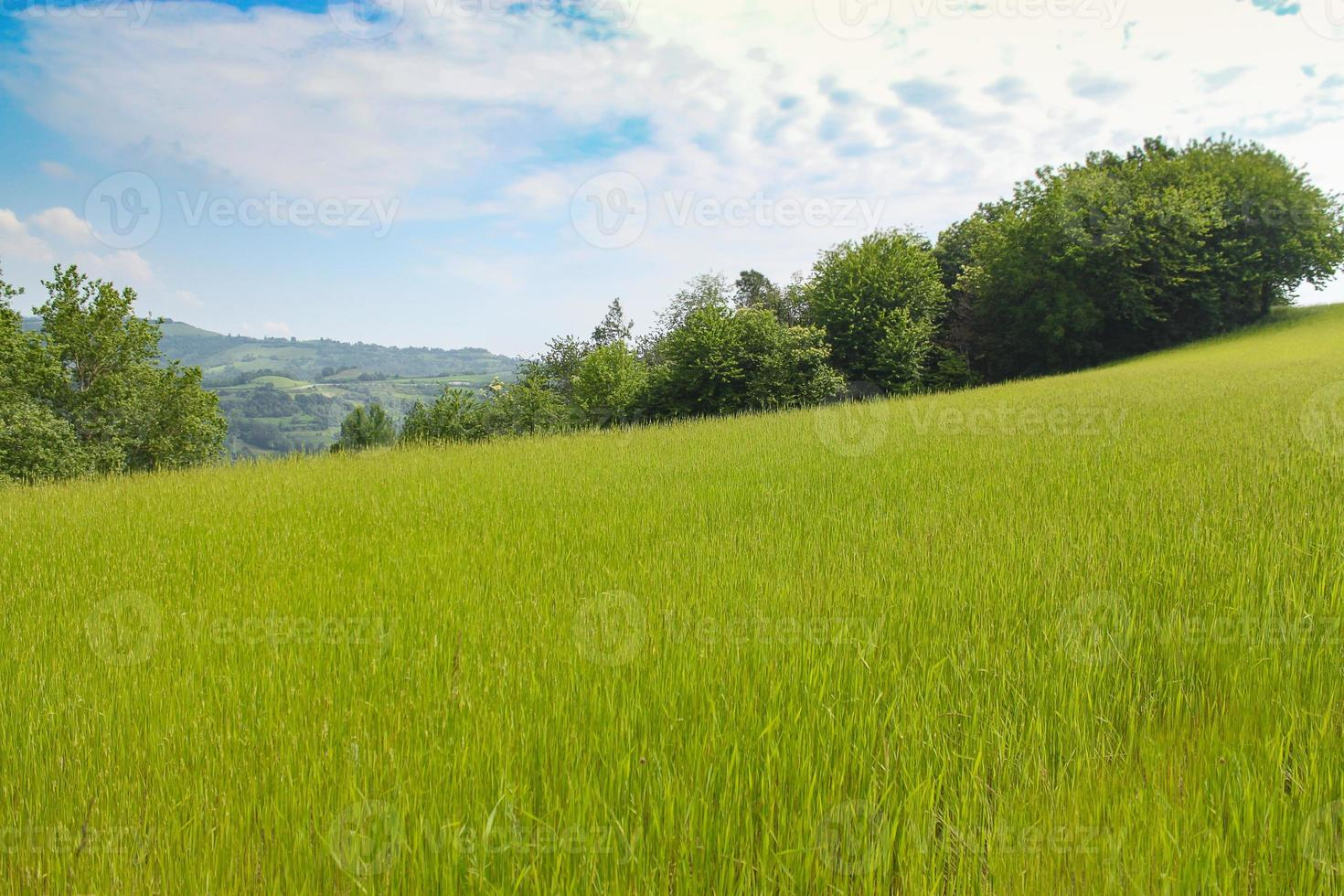 Natural landscape with beautiful green hills photo