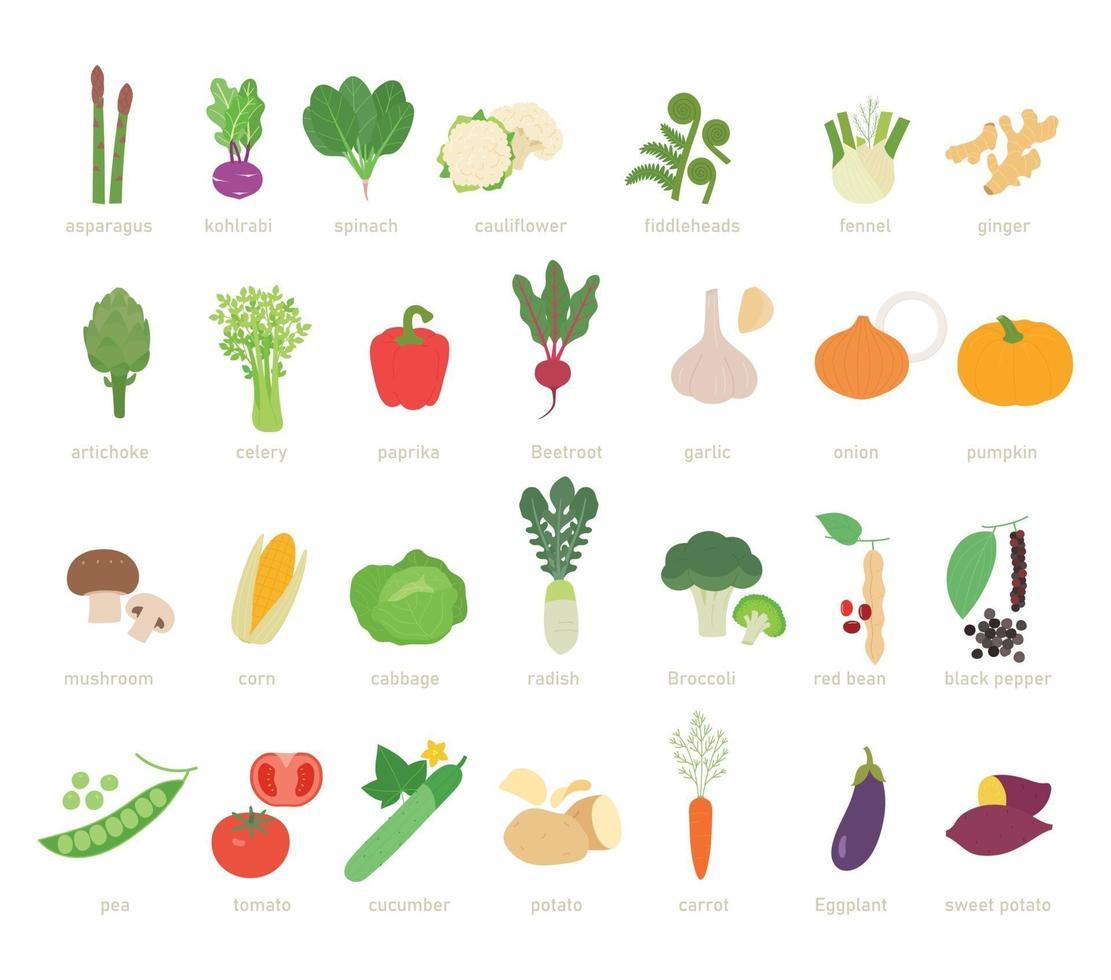 Vegetable set. flat design style minimal vector illustration.