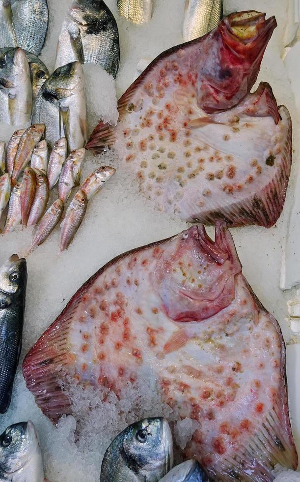 Comida para peces en un puesto de mercado de pescado. foto