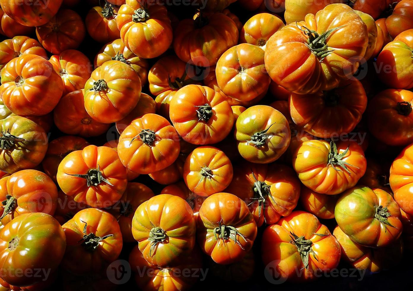 Healthy and Juicy Vegetable Tomato photo