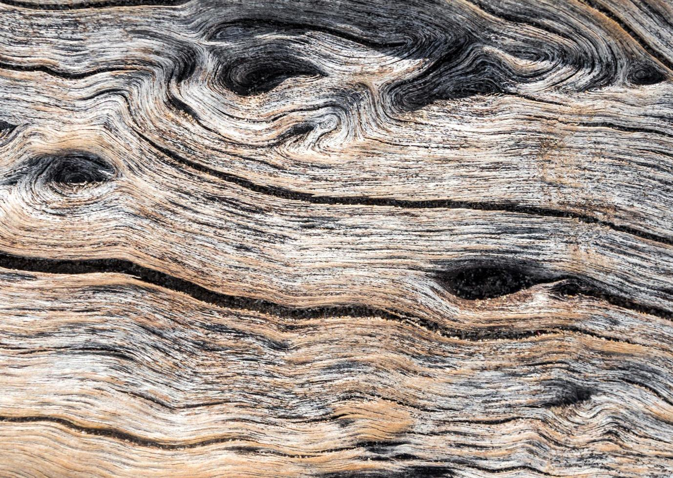 Abstract texture on surface of old wooden board photo