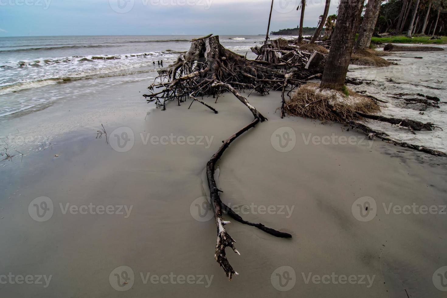 isla de caza escenas de playa de carolina del sur foto