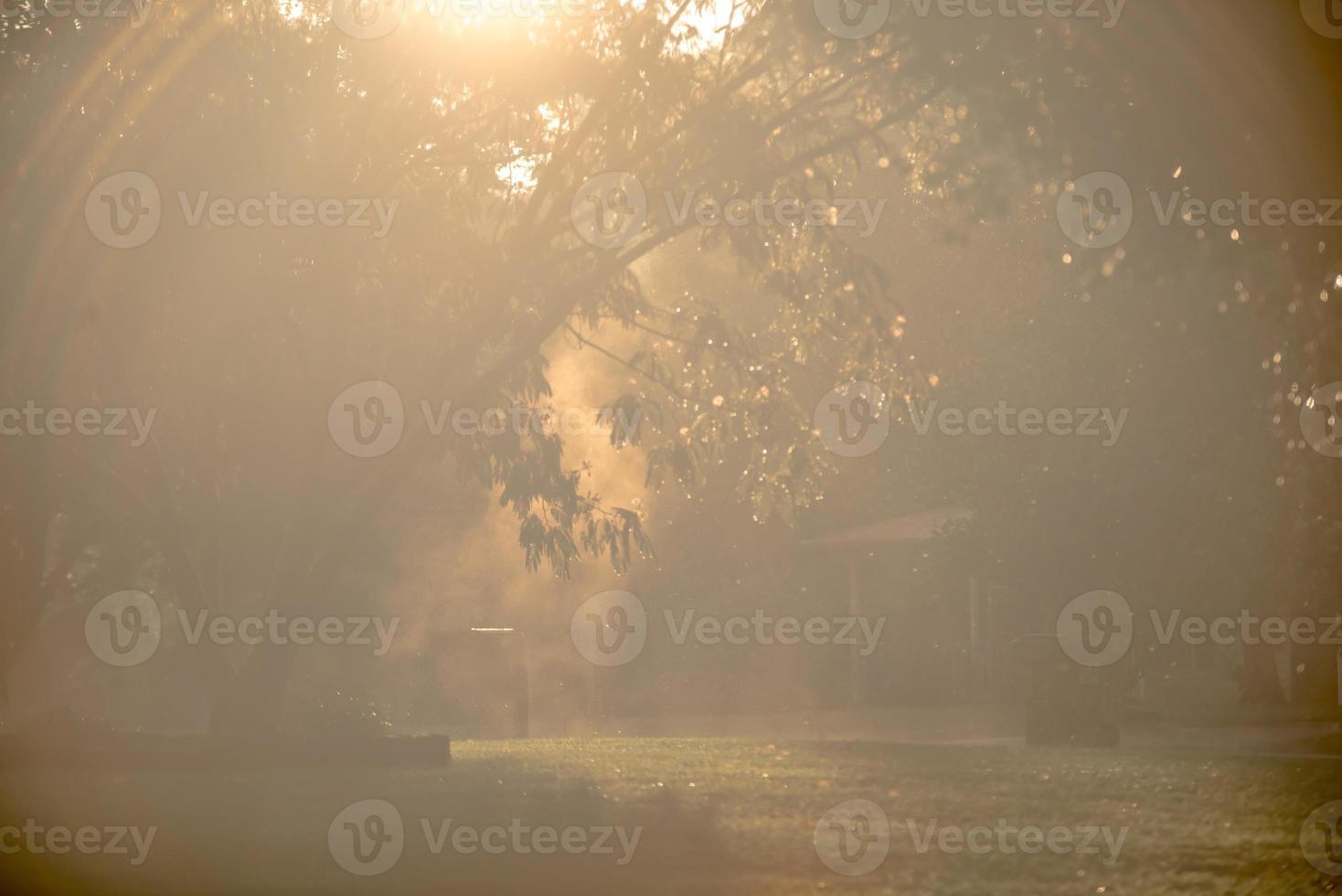 rayos de sol rompiendo después de la lluvia en el vecindario foto