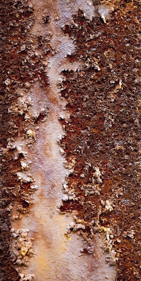 Detalle macro de metal oxidado foto