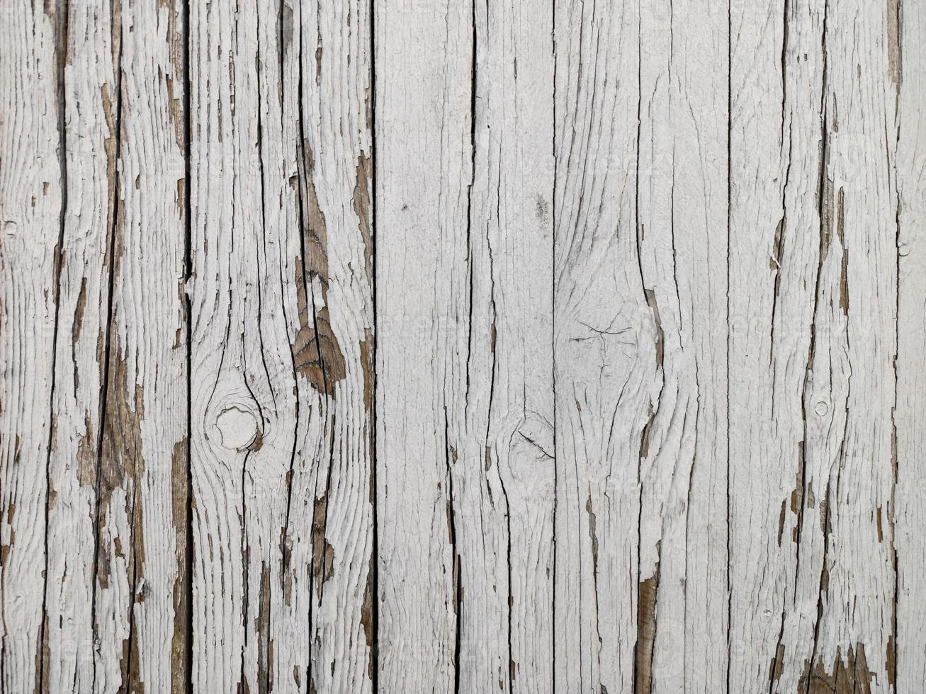 Background of white old wooden hedge photo